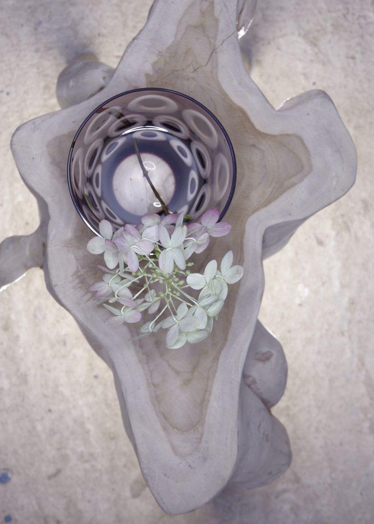 flower_individual_02_links